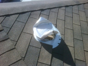 Raccoon Damage to Roof Vent