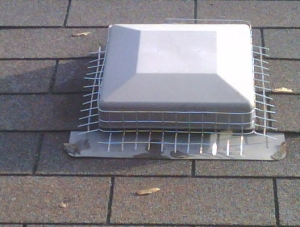 Roof vent prevention for raccoons & squirrels