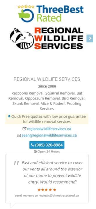 Rated Top Wildlife Animal Removal Company Burlington Oakville Ontario